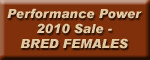 Click Here to see Listing of Bred Females Selling
