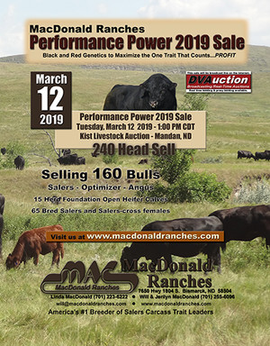 Click to see Performance Power 2019 Sale Catalog